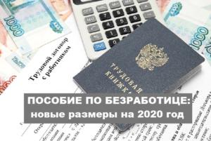 Сколько платят на бирже труда по безработице 2020 в москве