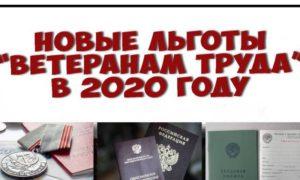 Льготы ветеранам труда федерального значения в 2020 году в свердловской области