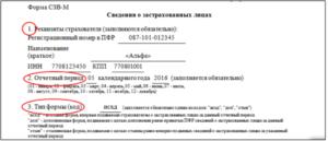 Кбк штраф в пфр за несвоевременную сдачу сзв-м отчета 2020