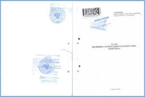 Копия заверенного налоговой устава