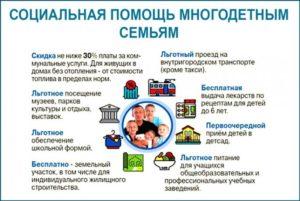 Помощь многодетным семьям от государства в 2020 году в челябинске
