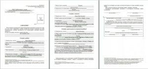 Бланк заявление на гражданство рф ребенку2020