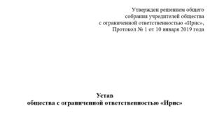 Устав ано 2020 один учредитель