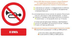 Закон о тишине ремонтные работы нижегородская область 2020