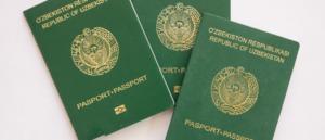 Двойное гражданство в узбекистане 2020 год