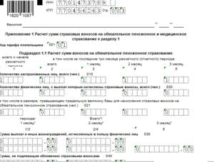 Образец заполнения нулевой формы рсв-1 в фнс в 2020 году