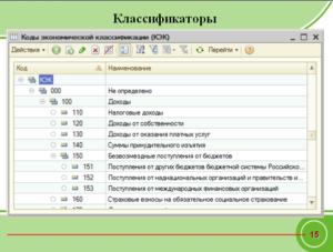 Казеные организации кэк в бюджете расшифровка